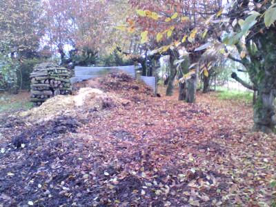 Compost Heap - in the beginning, it was a heap.