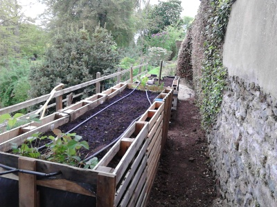 Soil and seeds in place.